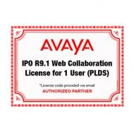 ipo-r9-1-web-collaboration-plds-license-for-1-user
